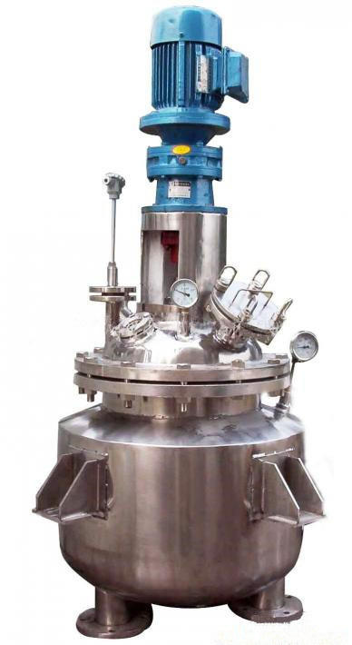 Sanitary Stainless Steel Mixing Reactor for Food Process Plant